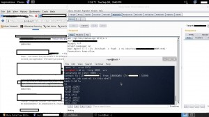 Exploiting a clients webserver